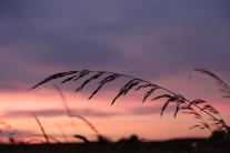 Sonnenuntergang in Horb